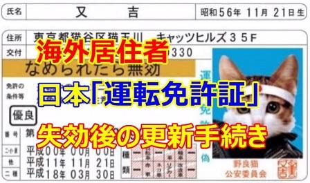 海外滞在中「日本の運転免許証の期限切れ」日本帰省時に更新手続き ...